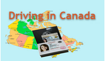 International Driver License Blog Index
