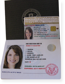 International driving license. (document style: golden)